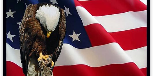eagle-with-american-flag